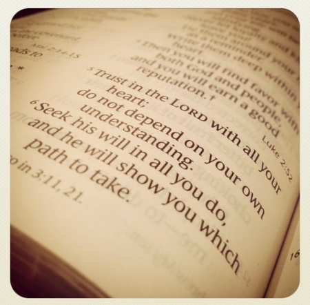 pic-of-Proverbs-3-5-6